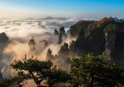 湖南张家界自由行旅游攻略,2020张家界旅游攻略